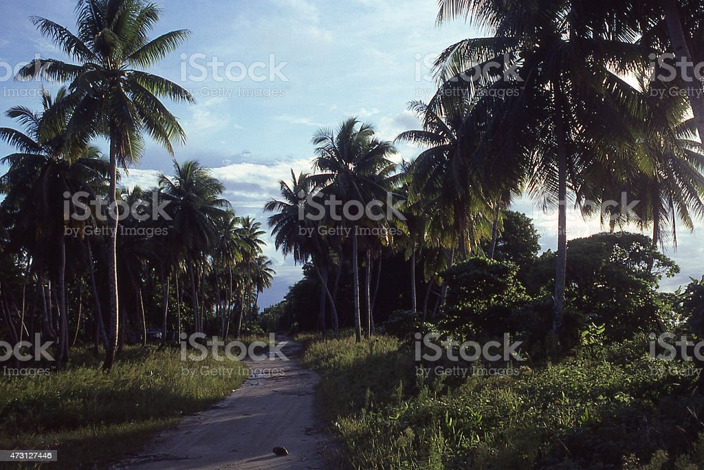 Dusk country Road Majuro Atoll Marshal Islands Pacific Ocean stock photo
