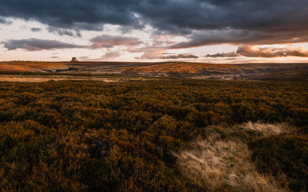 dusk descends over north york moors in late winter, goathland, yorkshire, uk. - uk military stock photos and pictures