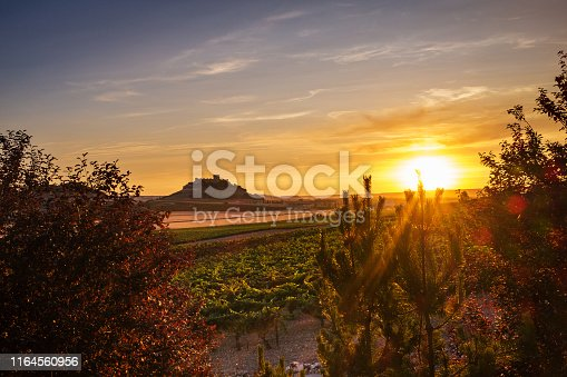 Panorama-view of vineyards and crop fields at dusk at the Ribera del Duero in Spain's Northern plateau, with the silhouette of the castle of Peñafiel to be recognised in the background.