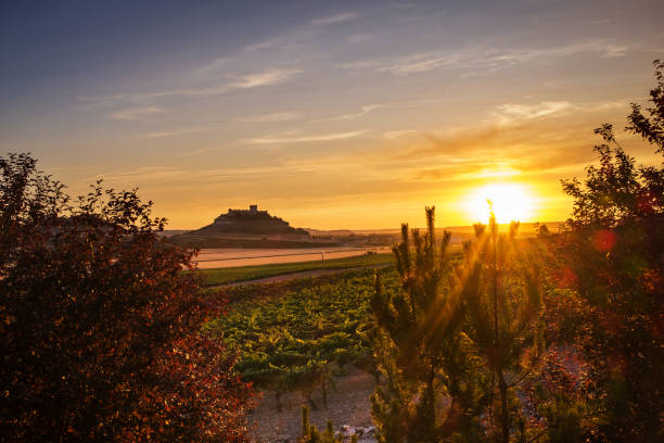 Dusk falling over the vineyards at the Ribera del Duero Panorama-view of vineyards and crop fields at dusk at the Ribera del Duero in Spain's Northern plateau, with the silhouette of the castle of Peñafiel to be recognised in the background. duero stock pictures, royalty-free photos & images