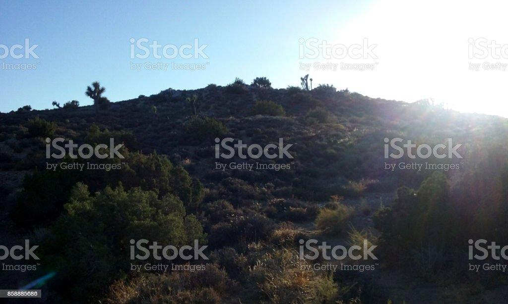 Dusk Falls Upon the Desert Hillside stock photo