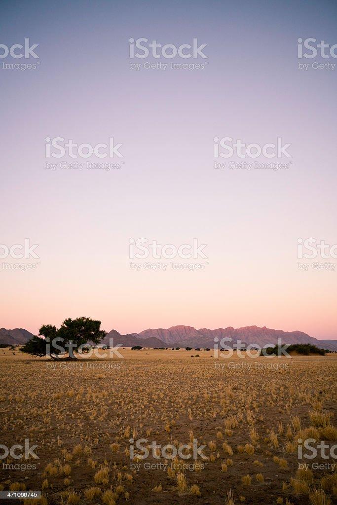Dusk Scene Namibia Africa royalty-free stock photo