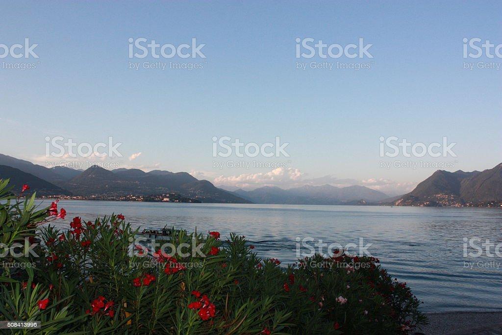 Crepuscolo Vista Di Stresa Al Lago Lago Maggiore Italia Fotografie Stock E Altre Immagini Di Acqua Istock