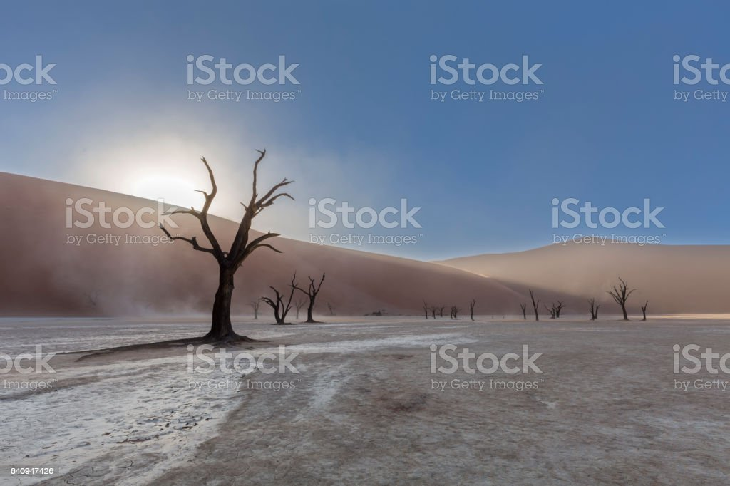 Dust and dry mud in Dooievlei stock photo