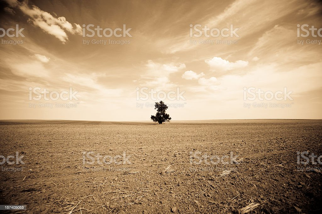 Dust Bowl: Depression on the Way? stock photo