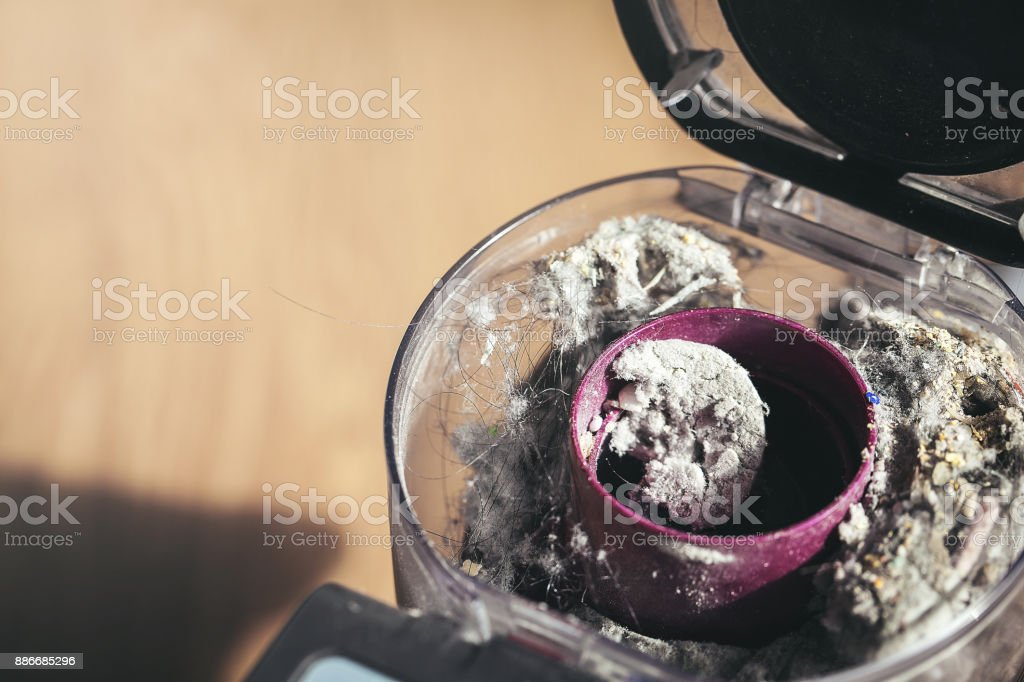 dust in electric vacuum cleaner, in winter stock photo