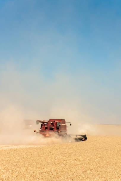 Dust in Wheat Field stock photo
