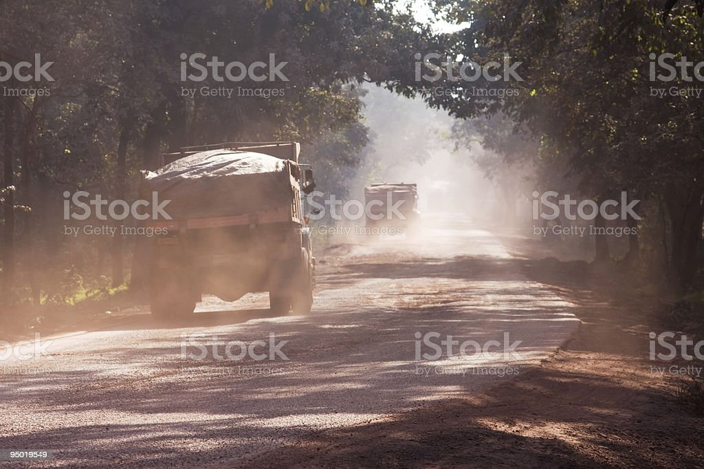 Dust on road in India royalty-free stock photo