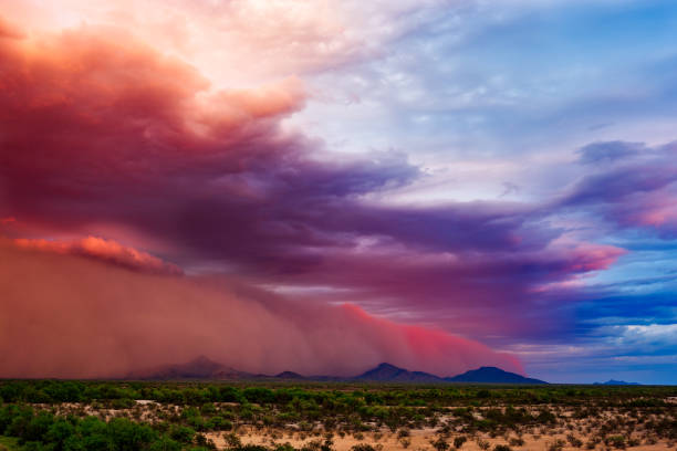 Dust storm in the desert stock photo