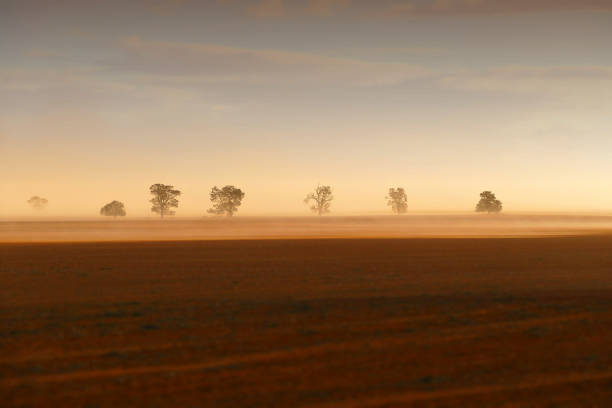 dust storm - desiccation stock pictures, royalty-free photos & images