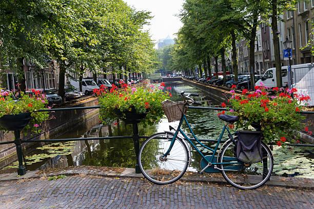 dutch bicycle on a bridge - den haag stockfoto's en -beelden