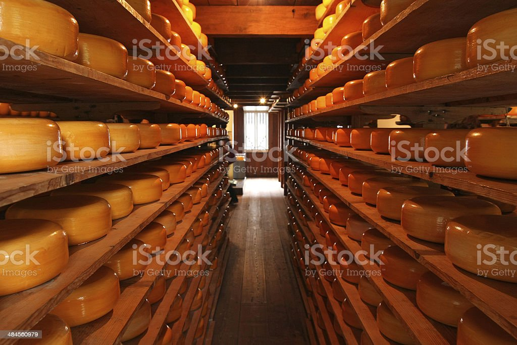 Dutch cheese factory stock photo