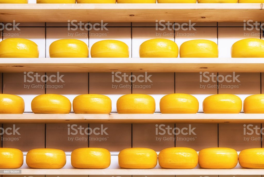 Dutch cheese ripening on wooden shelfs royaltyfri bildbanksbilder