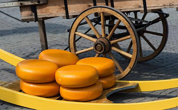 Dutch cheese truckles – Foto