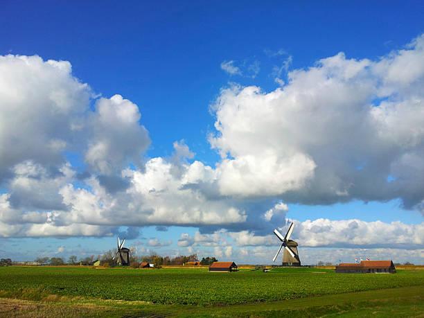 dutch countryside landscape holland - beemster stockfoto's en -beelden