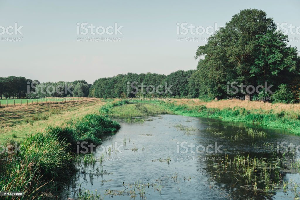 Dutch countryside with pond and trees in summer. stock photo