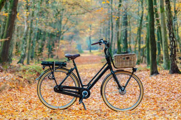 Dutch electric black cargo bicycle with basket stock photo