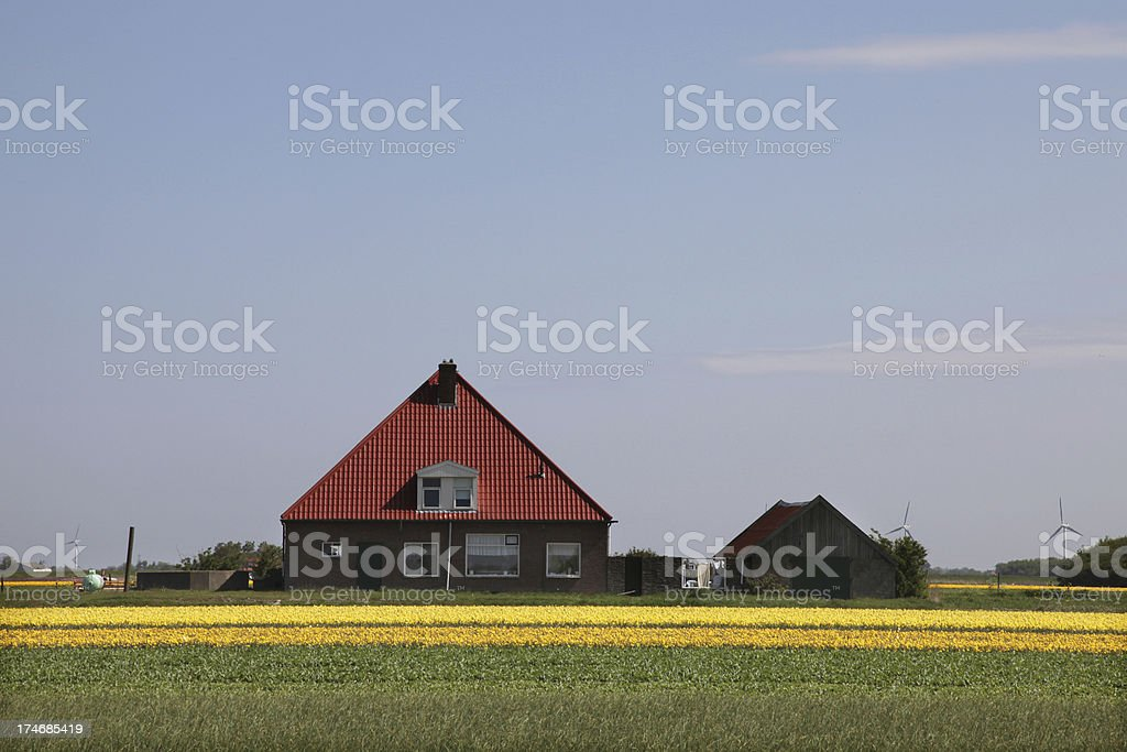 Dutch Farm House royalty-free stock photo