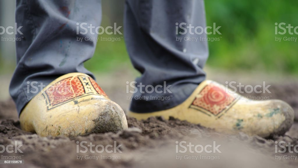 Dutch farmer, wooden shoes stock photo