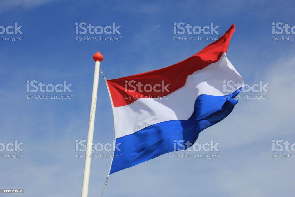 Dutch flag - foto de stock