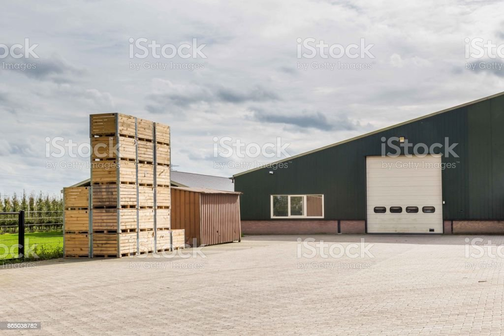 Dutch fruit farm Betuwe Netherland stock photo