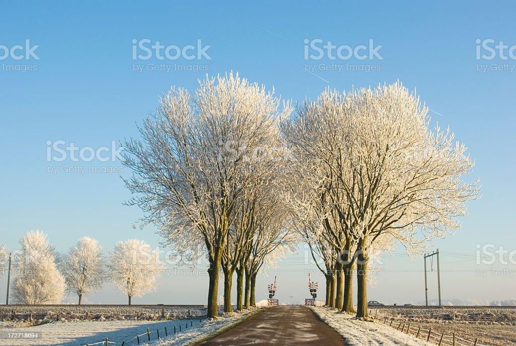 Dutch Landscape: Railway Crossing in Winter royalty-free stock photo