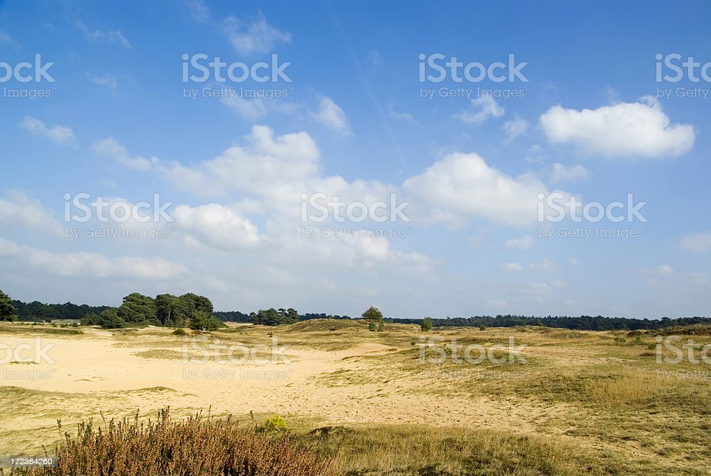 Dutch Landscape: Sand Dunes (Wekeromse Zand) royalty-free stock photo