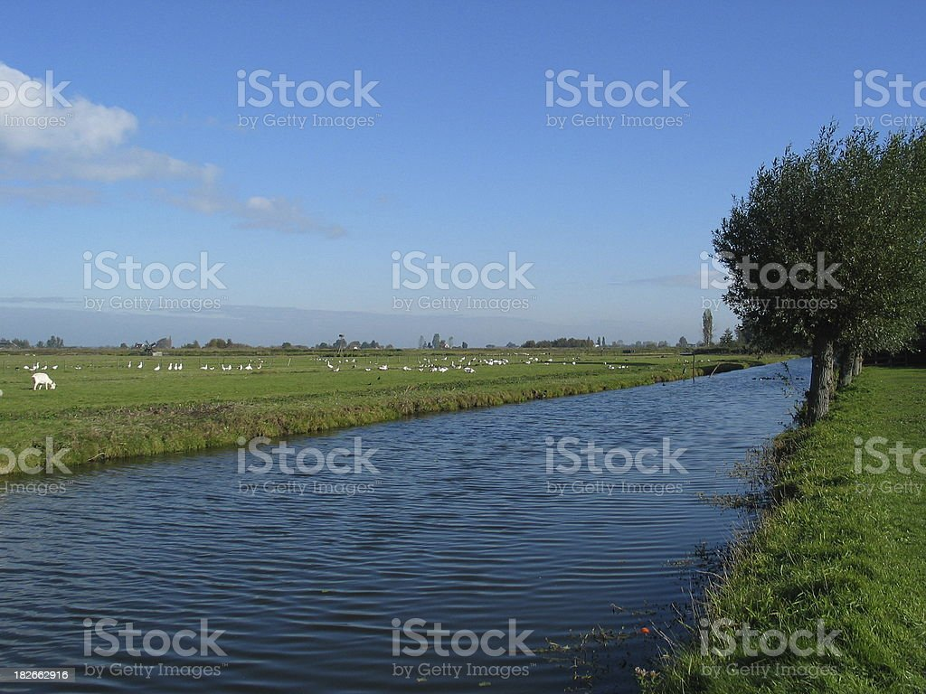 Dutch landscape with blue sky and water royalty-free stock photo