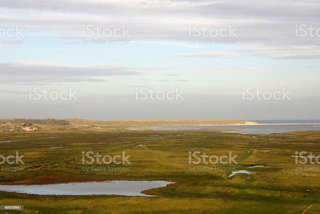 Dutch Landscapes: De Slufter (Texel, Netherlands) royalty free stockfoto