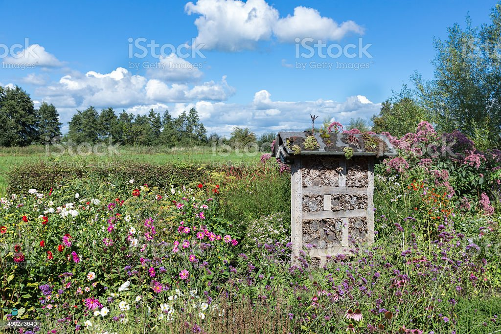 Dutch national park with insects hotel in colorful garden stock photo