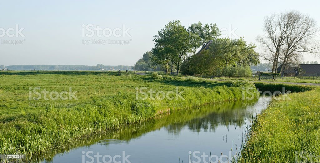 Dutch Polder Scene royalty-free stock photo