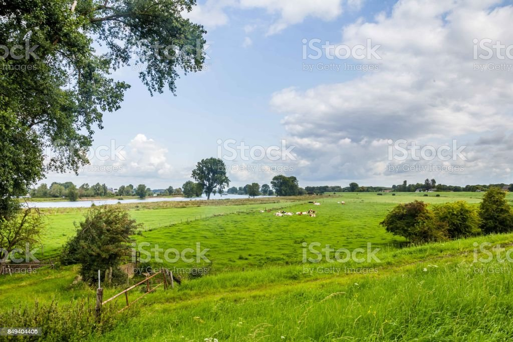 Río paisaje holandés - foto de stock
