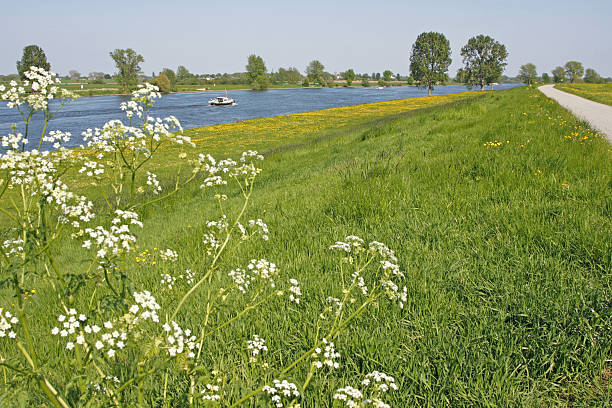 Dutch river Meuse # 1 River Meuse in the Netherlands in springtime meuse river stock pictures, royalty-free photos & images