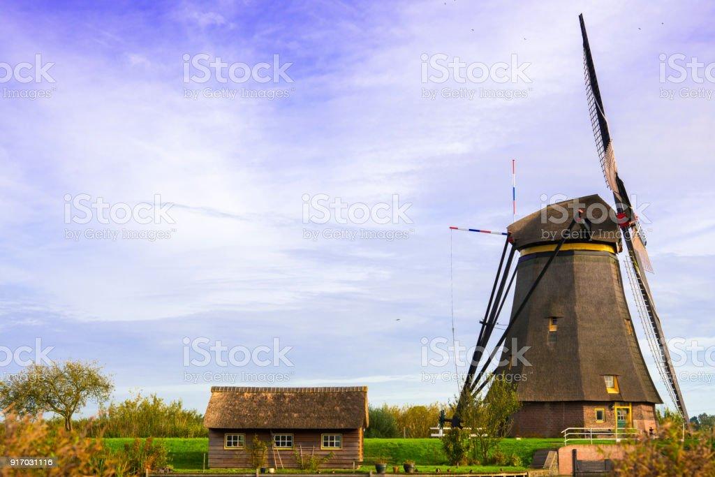 Dutch wind mills in polder landscape, Kinderdijk, Alblasserdam. World Heritage, against blue sky stock photo