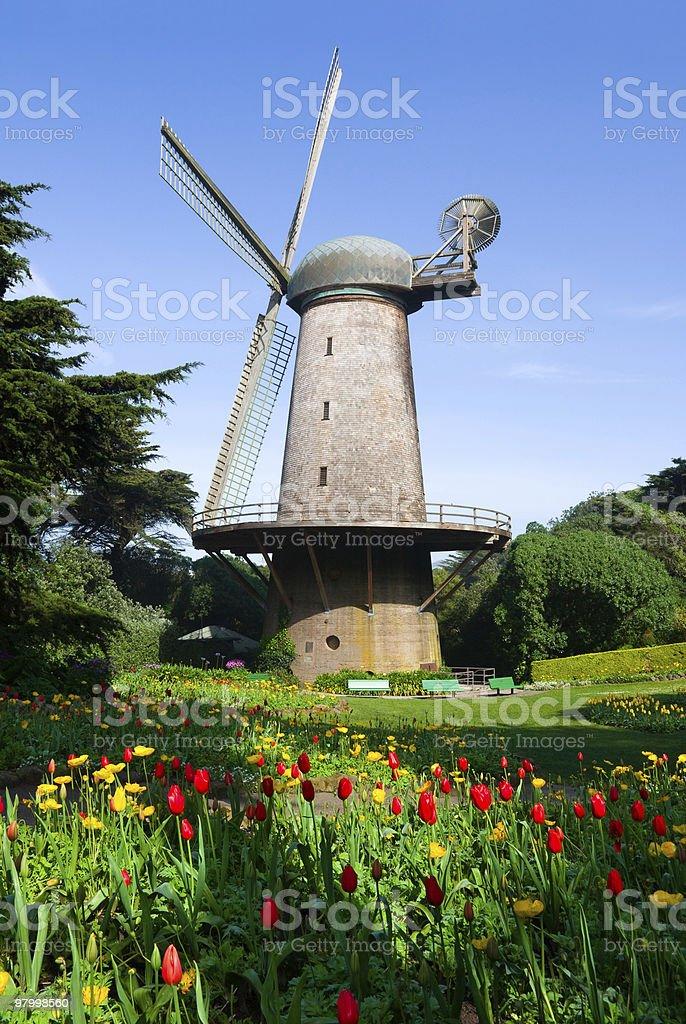 Moinho de vento holandeses foto royalty-free