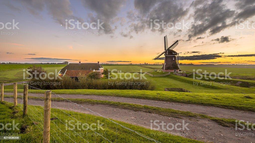 Dutch Wooden windmill in grassy dairy landscape stock photo