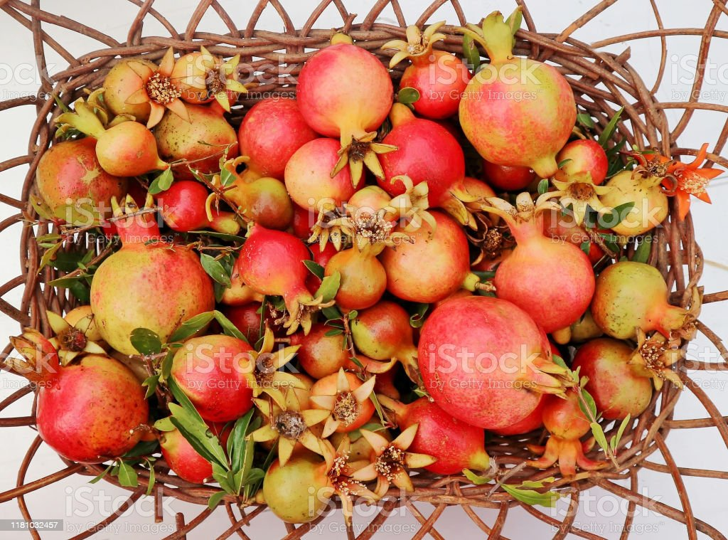 Dwarf Pomegranates Fruits On A Wicker Basket They Are Also Known As Miniature Or Bonsai Of The Normal Variety Stock Photo Download Image Now Istock