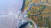 Dyke, salt marsh and coastline - aerial view