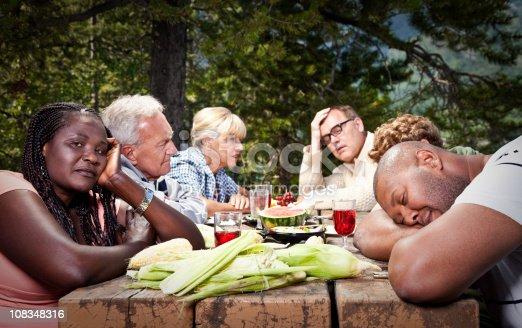 istock Dysfunctional Family Picnic 108348316