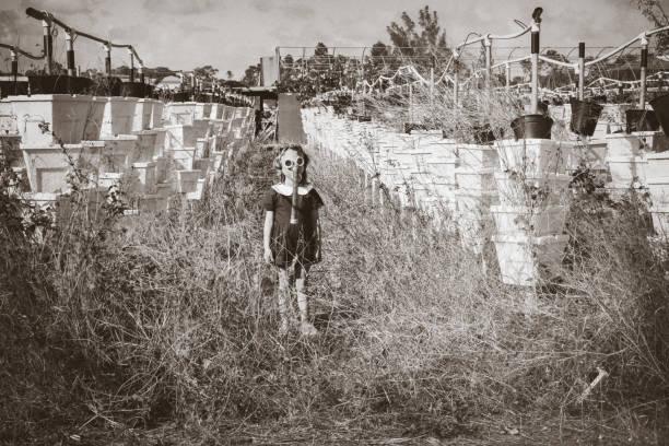 dystopia - zombie apocalypse stock photos and pictures