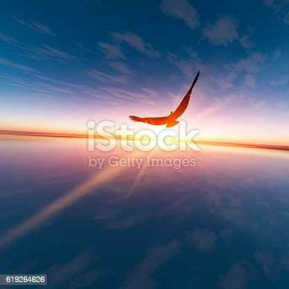 istock Eagle against horizon sun 619264626