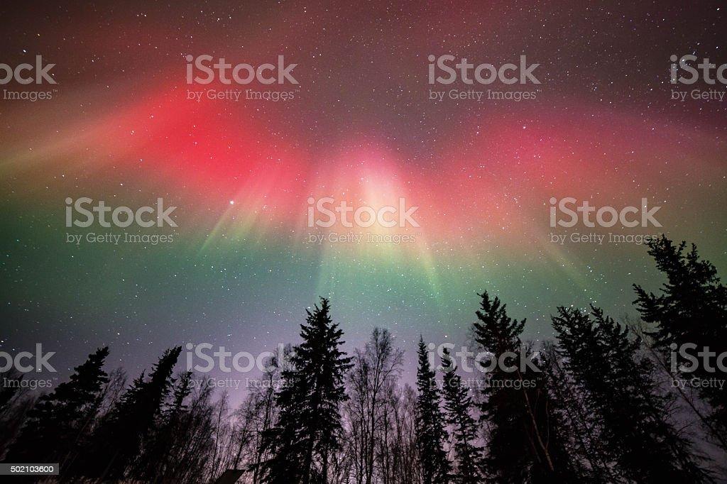 Eagle Aurora stock photo