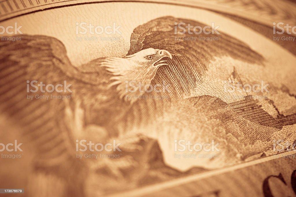 Eagle Close Up stock photo