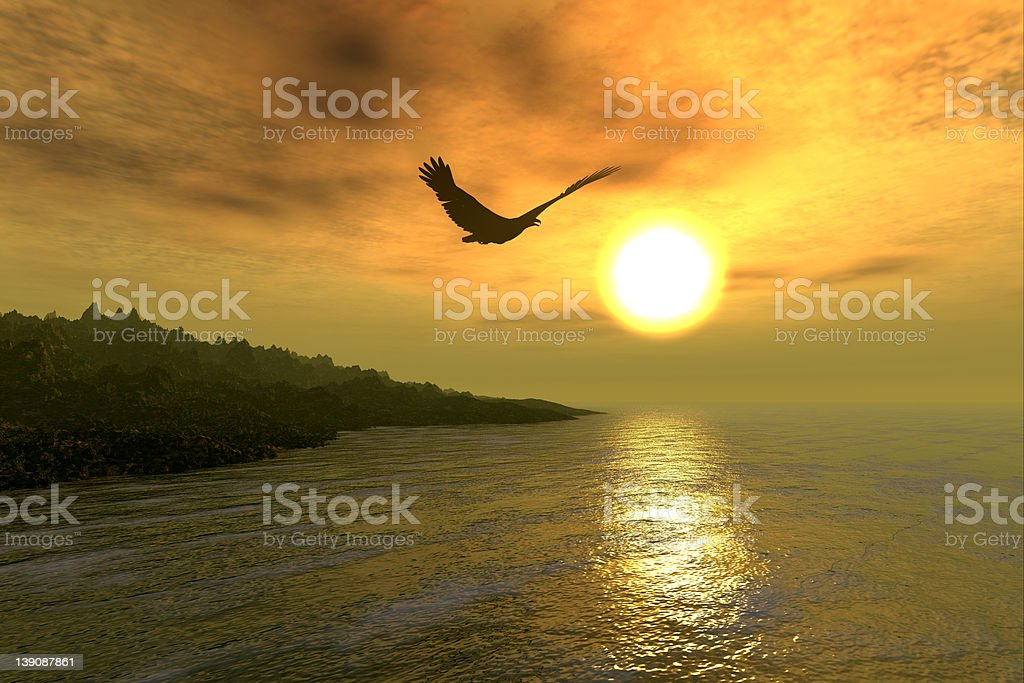 Eagle Coast royalty-free stock photo