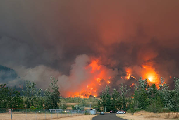 Eagle Creek Wildfire Oregon. – Foto
