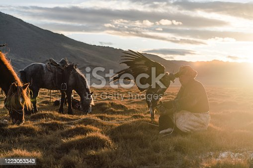 Eagle hunter in steppe  in Mongolia