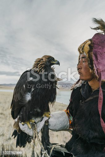 Eagle hunter looking in the eyes of eagle in desert in Mongolia