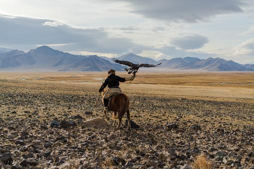 Eagle hunter on horse in desert in Mongolia