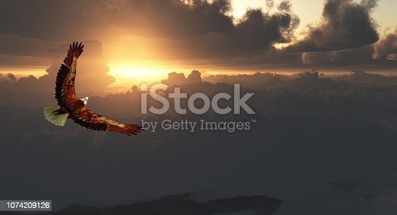 Eagle in Flight Above Dramatic Cloudscape. Sunset or sunrise