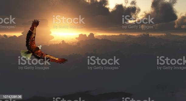 Eagle in flight above dramatic cloudscape picture id1074209126?b=1&k=6&m=1074209126&s=612x612&h=5ayvzhqfznvsuikwrq48kqotifcxby5xwfa2cjc4fae=